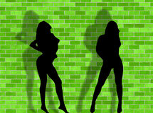 Sexy women and brick background Stock Image