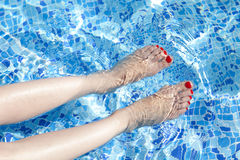 Sexy women legs splashing in swimming pool Stock Photography