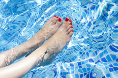 Sexy women legs splashing in swimming pool Stock Images