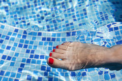 Sexy women legs splashing in swimming pool Stock Photos