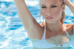 Sexy women in pool Stock Images