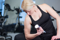 Sexy young athletics girl doing dumbbells press exercises. Fitness muscled woman in black sport clothing workout on bench in gym Stock Photography