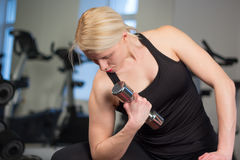Sexy young athletics girl doing dumbbells press exercises. Fitness muscled woman in black sport clothing workout on bench in gym Stock Photos