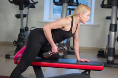 Sexy young athletics girl doing dumbbells press exercises. Fitness muscled woman in black sport clothing workout on bench in gym Stock Images