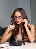 Sexy young business lady in office Stock Image