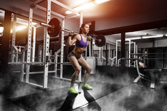 Sexy young girl doing squat exercises with barbell. Sexy young girl doing squat exercises. Fitness brunette woman squat in gym with barbell Royalty Free Stock Image