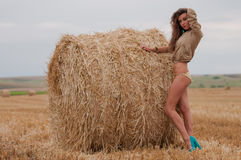 Sexy young girl with straw bale Royalty Free Stock Image