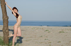young red hair woman wearing coverall bikini Stock Images