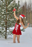 Sexy young Santa-girl Stock Images