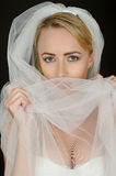 Sexy Young Wedding Bride in White Lingerie Royalty Free Stock Image