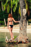 Sexy young woman in bikini by tree on tropical beach Royalty Free Stock Photos