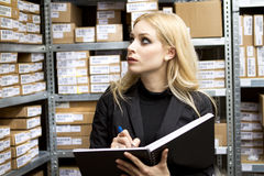 Sexy young woman doing inventory Royalty Free Stock Image