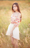 young woman in a field royalty free stock photography