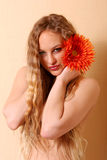 Sexy young woman with long hair Royalty Free Stock Image