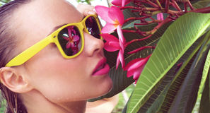 Sexy young woman wearing bikini with wet hair and tree flower on a sunny day. Closeup of sexy young woman wearing bikini and yellow sunglasses with wet hair Stock Photography