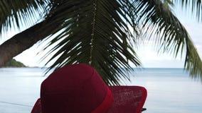 Seychellen-Kokosnusspalmenfrau stock video