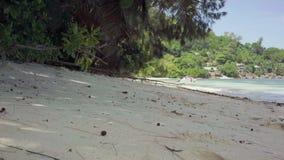 seychellen Praslin-Insel Sch?ne Landschaft Meerwasserrollen auf dem Strand in den Wellen Kleine H?user versteckt in den B?umen stock footage