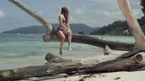 seychellen Praslineiland Vrij slanke aantrekkelijke jonge vrouwenzitting op de boomboomstam bij het water op het strand stock videobeelden