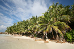 Seychellen-Strand Stockfoto