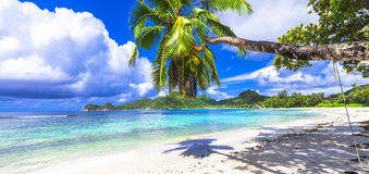 Seychellerna ö stränder av Mahe royaltyfri fotografi