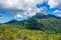 Seychellerna 44 Arkivfoto