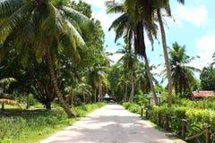 seychelles photographie stock libre de droits