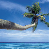 Seychelles. Beach on La Digue island, Seychelles Stock Images