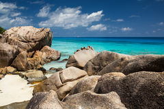 seychelles Immagine Stock