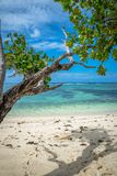 Seychelles, Anse Source d`argent Royalty Free Stock Photography