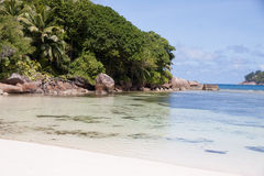 Seychelles Baie Lazare Palm Shade Royalty Free Stock Photography