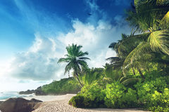 Seychelles beach Stock Images