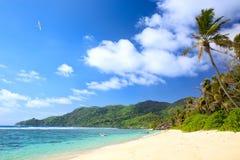 Seychelles beach Royalty Free Stock Image