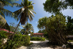 Seychelles countryside Royalty Free Stock Image