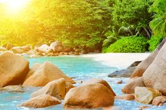 Seychelles dream beach. With turquoise crystal clear water Royalty Free Stock Photos