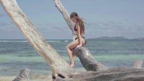 Seychelles Isla de Praslin Mujer joven atractiva delgada bonita que mira en la cámara que se sienta en el tronco de árbol almacen de metraje de vídeo