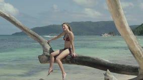 Seychelles Isla de Praslin Mujer joven atractiva delgada linda que se sienta en el tronco de árbol en el agua en la playa almacen de metraje de vídeo