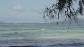 Seychelles Isla de Praslin Mujer rubia adorable en el agua azul clara lejos en el fondo ?rbol tropical almacen de metraje de vídeo