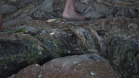 Seychelles Isla de Praslin Tres turistas descalzos que suben, subiendo el primer de las piedras Gente que explora la isla metrajes