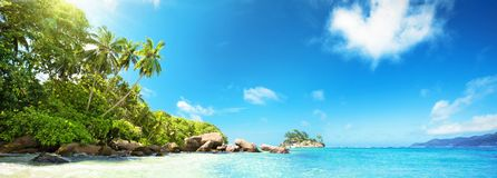 Seychelles Islands. Palm Beach In Tropical Paradise royalty free stock photography