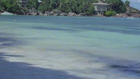 seychelles ?le de Praslin Petits pains clairs d'eau de mer sur la plage dans les vagues avec la fin blanche de mousse  Petites ma banque de vidéos