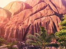 Seychelles tropicales Palmeras en el La Digue Fotos de archivo libres de regalías