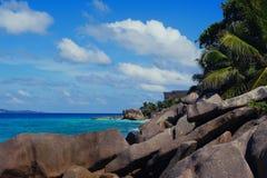 Seychelles tropicales Palmeras en el La Digue Imágenes de archivo libres de regalías