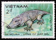 Seymouria, reeksdinosaurussen, circa 1984 Royalty-vrije Stock Afbeeldingen