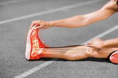 Sezione bassa dell'atleta femminile che allunga sulla pista di sport Fotografia Stock Libera da Diritti