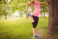 Sezione bassa della donna che si esercita con l'allungamento della gamba Immagine Stock Libera da Diritti