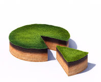 Sezione trasversale affettata di terra con erba isolata su fondo bianco Fotografia Stock Libera da Diritti