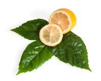 Sezione trasversale del limone giallo Fotografia Stock Libera da Diritti