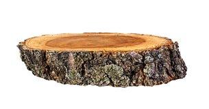 Sezione trasversale del tronco di albero isolata su bianco Immagini Stock
