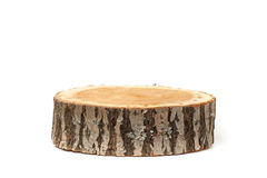 Sezione trasversale del tronco di albero su fondo bianco Immagine Stock