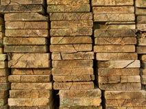 Sezione trasversale di legno Immagine Stock Libera da Diritti